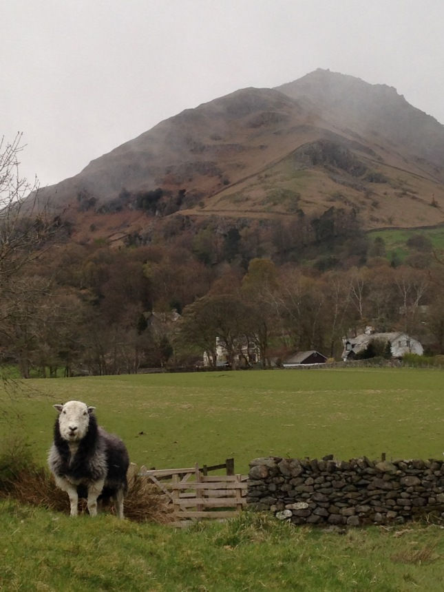 Helm Crag in Grasmere